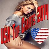 USA Top Charts 2014 by Various Artists