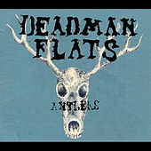 Antlers by Deadman Flats