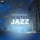 Winter Jazz Lounge von Various Artists