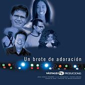 Un Brote De Adoración by Various Artists