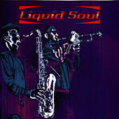 Liquid Soul (ARK 21) by Liquid Soul