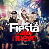 De Fiesta En Año Nuevo by Various Artists