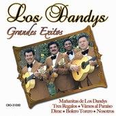 Grandes Exitos by Los Dandys