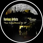 Pure Techno / Minimal, Vol. 29 - EP by Various Artists