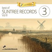 Best Of Suntree Records, Vol. 3 (Five Years Anniversary) - EP by Various Artists