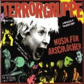 Musik Für Arschlöcher by Terrorgruppe