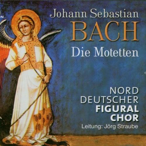 Johann Sebastian Bach: Die Motetten by Jörg Straube Norddeutscher Figuralchor