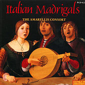 Italian Madrigals by The Amaryllis Consort