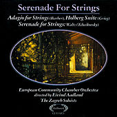 Serenade for Strings by Zagreb Soloists