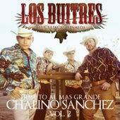 Tributo al Mas Grande Chalino Sanchez, Vol. 2 by Los Buitres De Culiacán Sinaloa