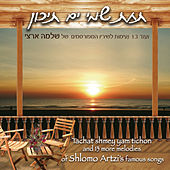 14 Melodies of Shlomo Artzi's's Famous Songs by Various Artists