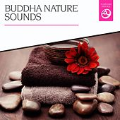 Buddha Nature Sounds by Various Artists