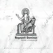 Regnavit Dominus by Dominikański Ośrodek Liturgiczny