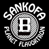 Planet Flavortron by Sankofa
