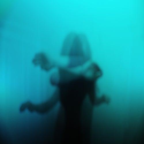Shadow Shows by Seryn