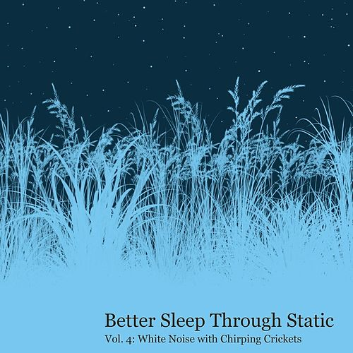 White Noise With Chirping Crickets by Better Sleep Through Static