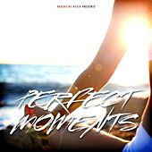 Perfect Moments by Various Artists