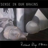 Sense in Our Brains by Richard Rhys O'Brien