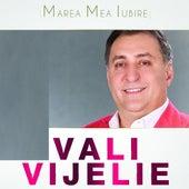 Marea Mea Iubire by Vali Vijelie