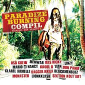 Paradize burning compil (Bienveni dan réalité) by Various Artists
