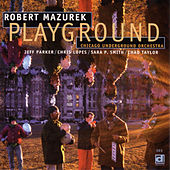 Playground by Robert Mazurek