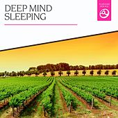 Deep Mind Sleeping by Various Artists