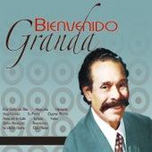 Bienvenido Granda by Bienvenido Granda