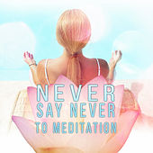 Never Say Never to Meditation - Mindfulness Meditation Spiritual Healing, Peaceful Music with the Sounds of Nature, Soothing Chill Out Music for Power Yoga, New Age, Chakra Meditation by Mindfulness Meditation Academy