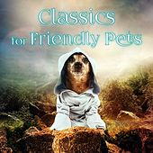 Classics for Friendly Pets – Calm Down Your Animal Companion, Soothing Music While You Are Out, Lovely Pets, Relaxing Piano for Dogs, Cats & Other Friends, Relax Melodies for Puppies & Kittens by Friendly Pets Music World