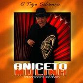 El Tigre Sabanero by Aniceto Molina