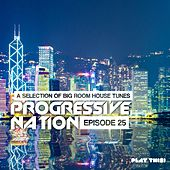 Progressive Nation, Vol. 25 by Various Artists