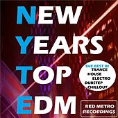 New Years Top EDM - EP by Various Artists