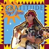 Gratitude by Tony