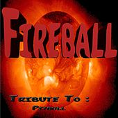 Fireball: Tribute to Pitbull by Various Artists