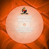 Winter 2015 Minimal& Techno Compilation by Various Artists