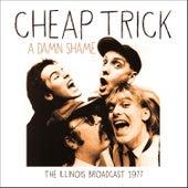 A Damn Shame (Live) von Cheap Trick