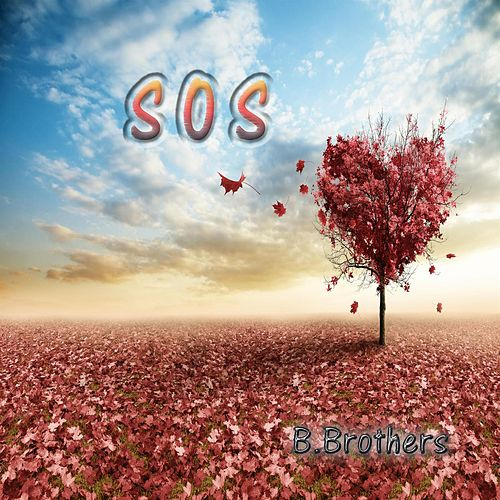 S.O.S. by B.Brothers