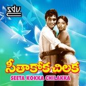 Seeta Kokka Chilakka (Original Motion Picture Soundtrack) by Various Artists