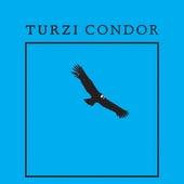 Condor - EP by turzi
