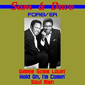 Sam & Dave Forever von Sam and Dave
