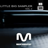 Little Big Sampler, Vol. 9 by Various Artists