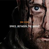 Space Between the Words by dan le sac