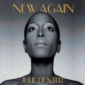 New Again by Julie Dexter