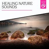 Healing Nature Sounds by Various Artists