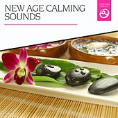 New Age Calming Sounds by Various Artists