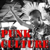 Punk Culture, Vol.1 (Live) by Various Artists