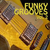 Funky Grooves, Vol. 2 by Various Artists