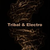 Tribal & Electro - DJ Tracks by Various Artists