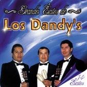 Grandes Éxitos de los Dandy's - 14 Éxitos by Los Dandys