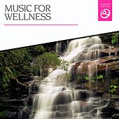 Music for Wellness by Various Artists